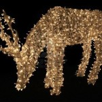 Christmas lights - deer